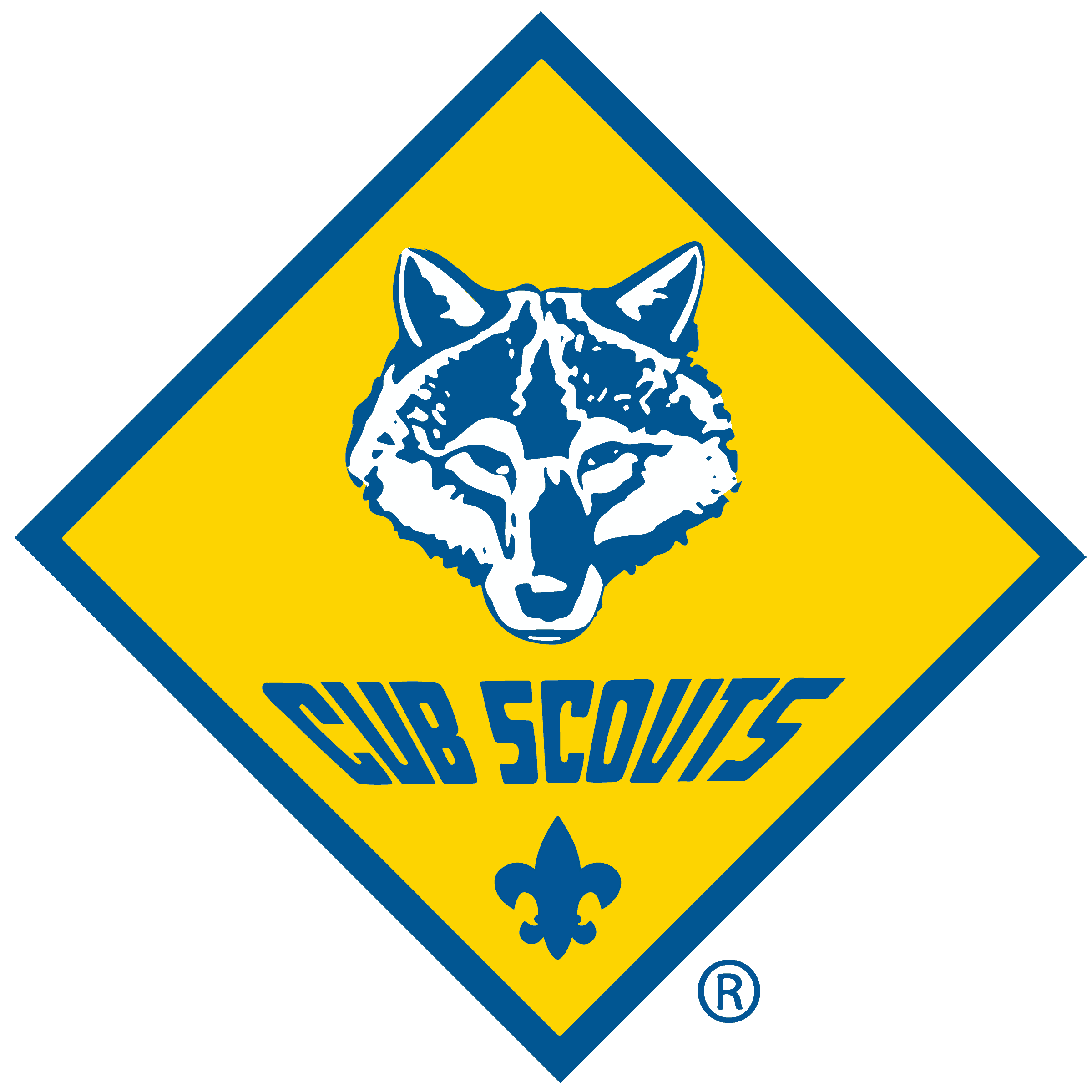 Home > Hawkeye Area Council, Boy Scouts of America